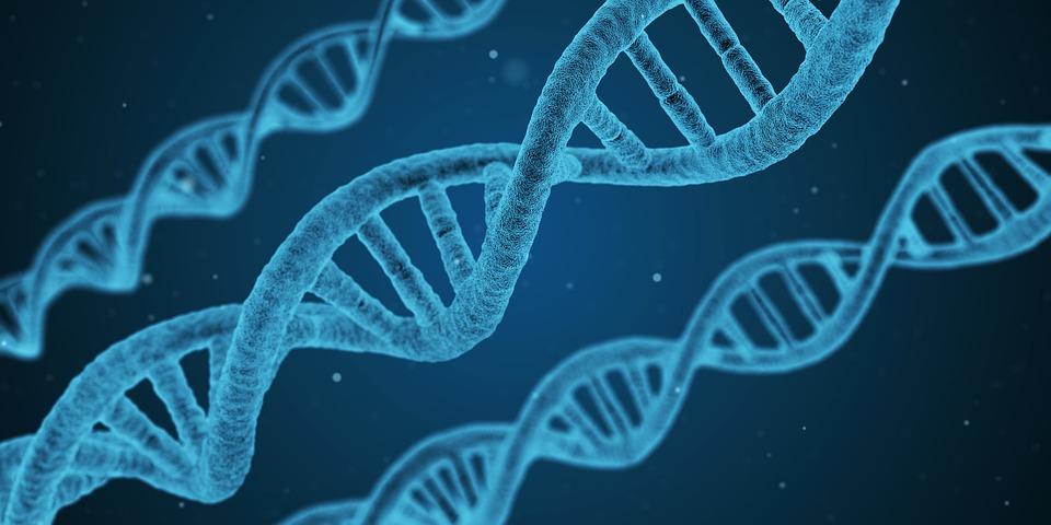 Biotechnology – Nature and Scope | Botany