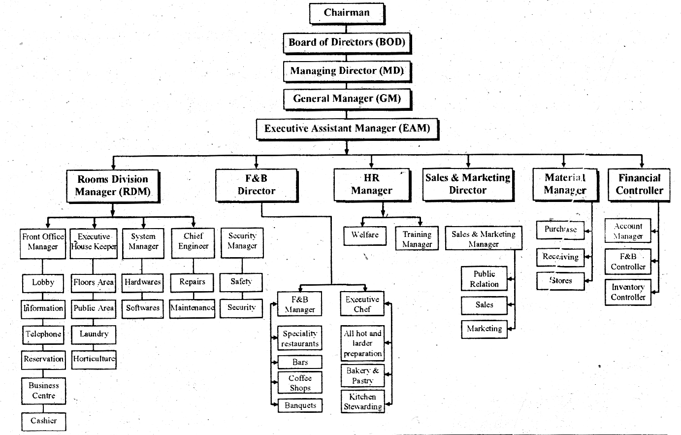 Organization Chart Of A Large Hotel Hotel Management