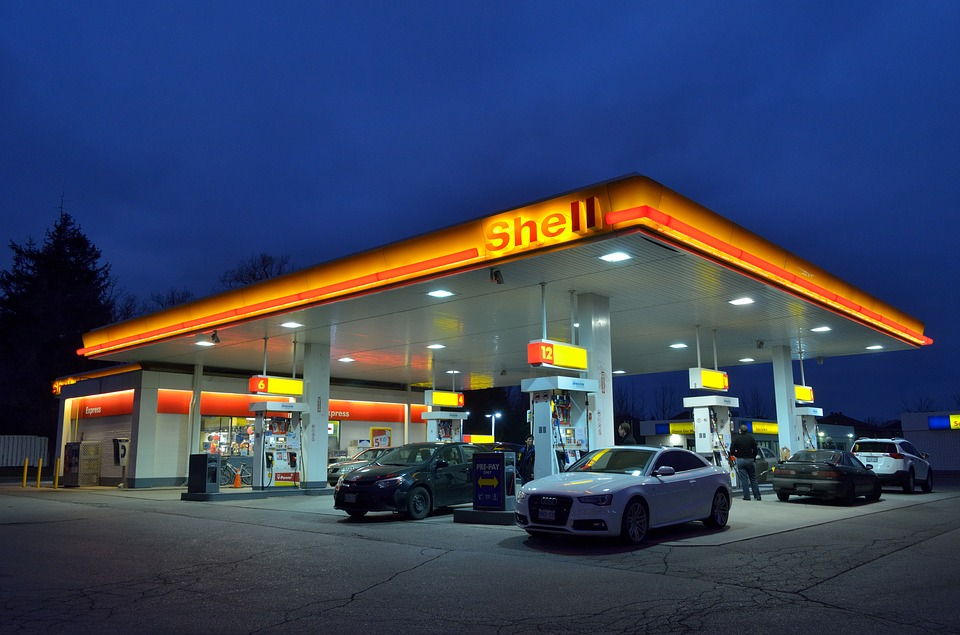 A Gas Station Burns in the Forest: Illuminating Our Moral Legacy – Summary | Write to Be Read