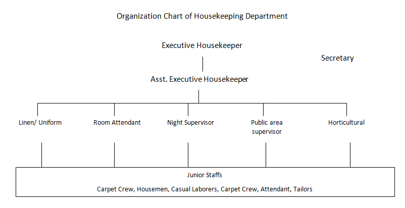 Illustrate organization chart
