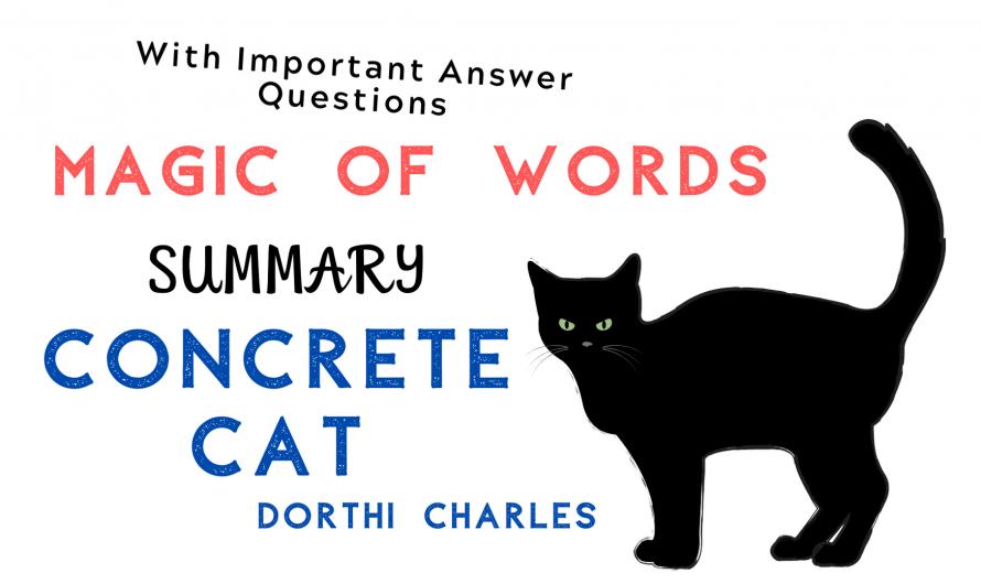 Summary – Concrete Cat   Magic of Words