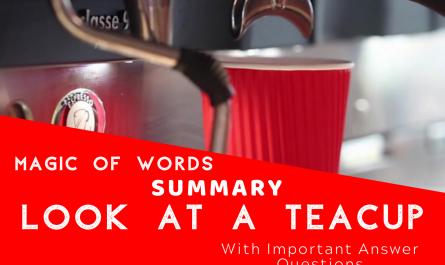 Summary Look at a teacup